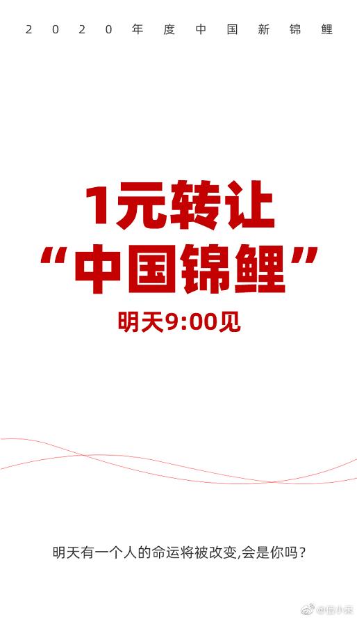 """1元转让""""中国锦鲤"""",这超180万转发的背后有什么营销逻辑?"""