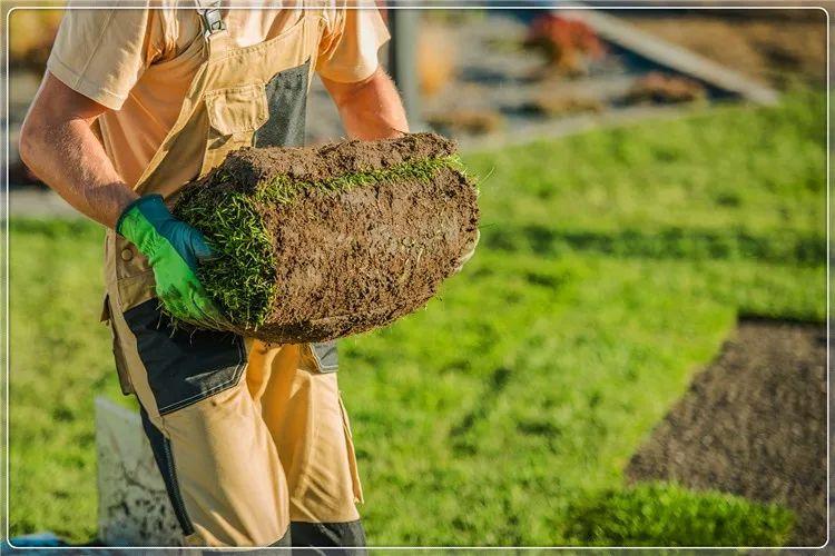 创业课堂分享想回农村搞种植赚钱项目  第6张